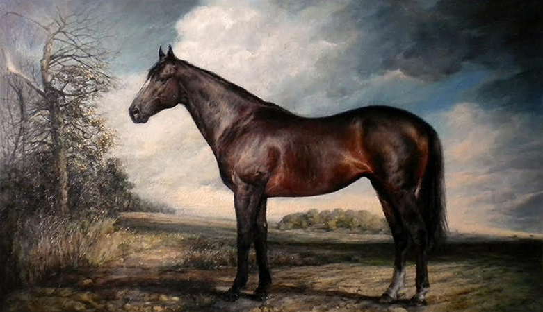 Horse, oil on linen, 45x75 cm
