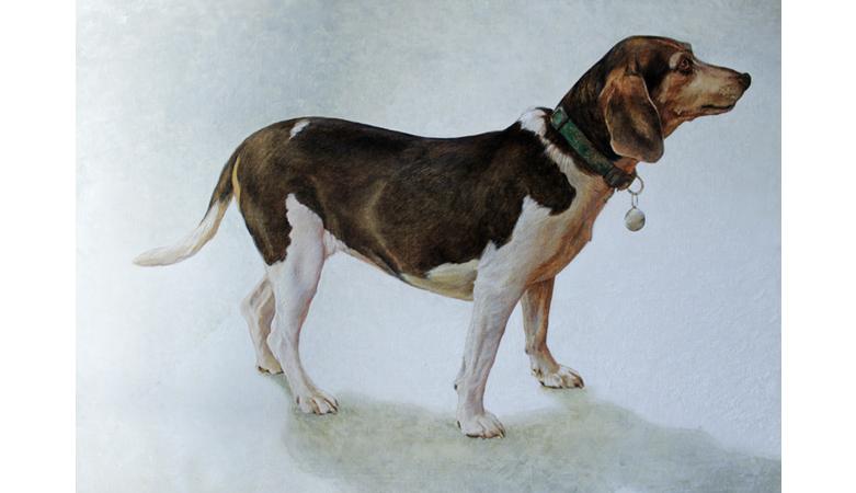 Lula (dog), oil on canvas, 100x50cm